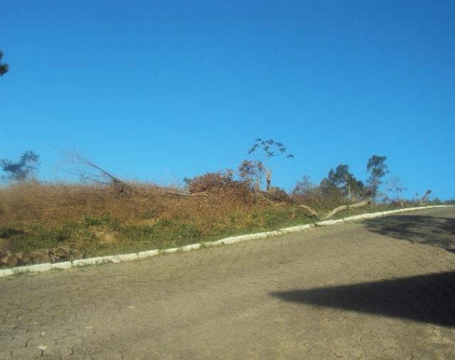 Terreno-Código-537-a-Venda--no-bairro-Centro-na-cidade-de-Antônio Carlos